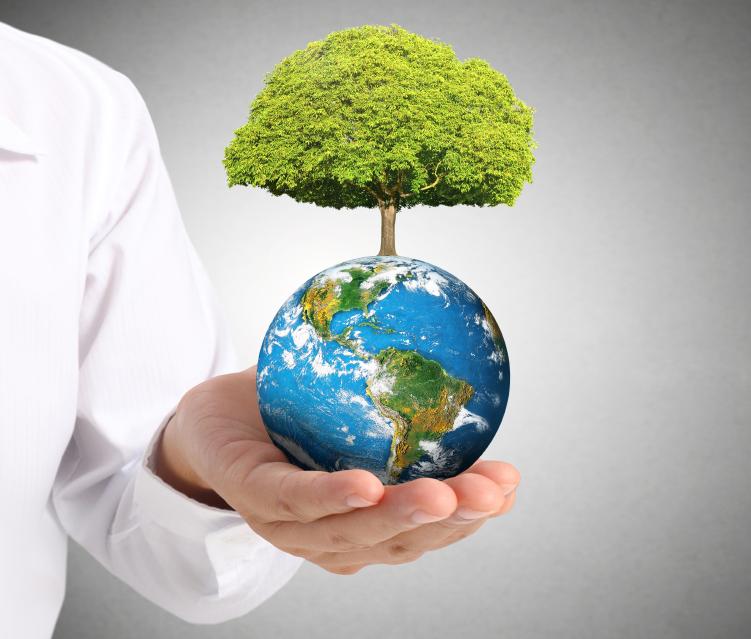 ISO 14001 Manajemen Lingkungan