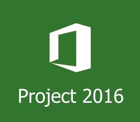 Microsoft Project 2016 Basic & Intermediate