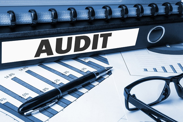 AUDITING INVESTEMENT ACTIVITIES