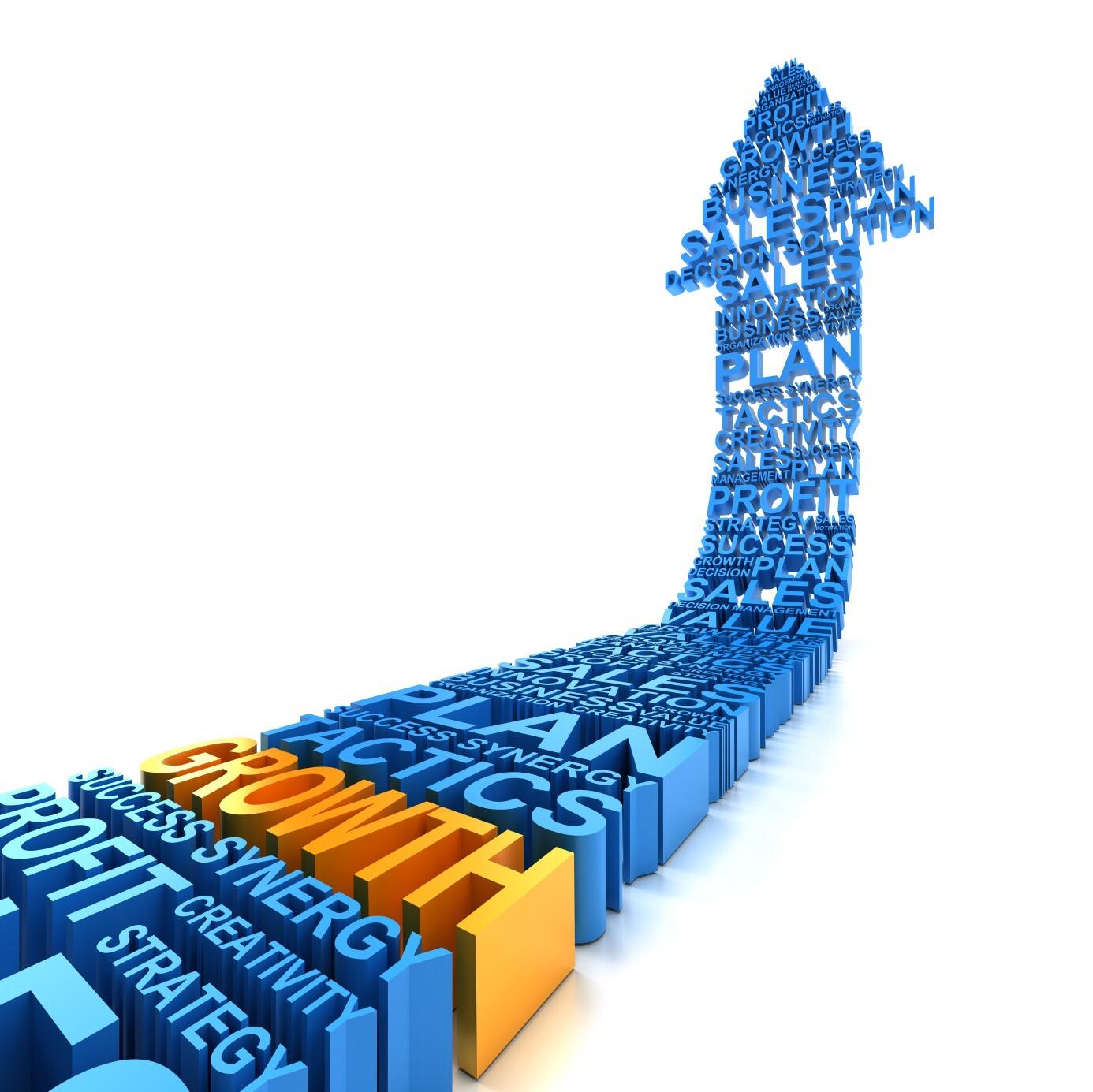 Aplikasi Dan Teknis Pengukuran Kinerja Perusahaan Asuransi Dengan Pendekatan Balanced ScoreCards