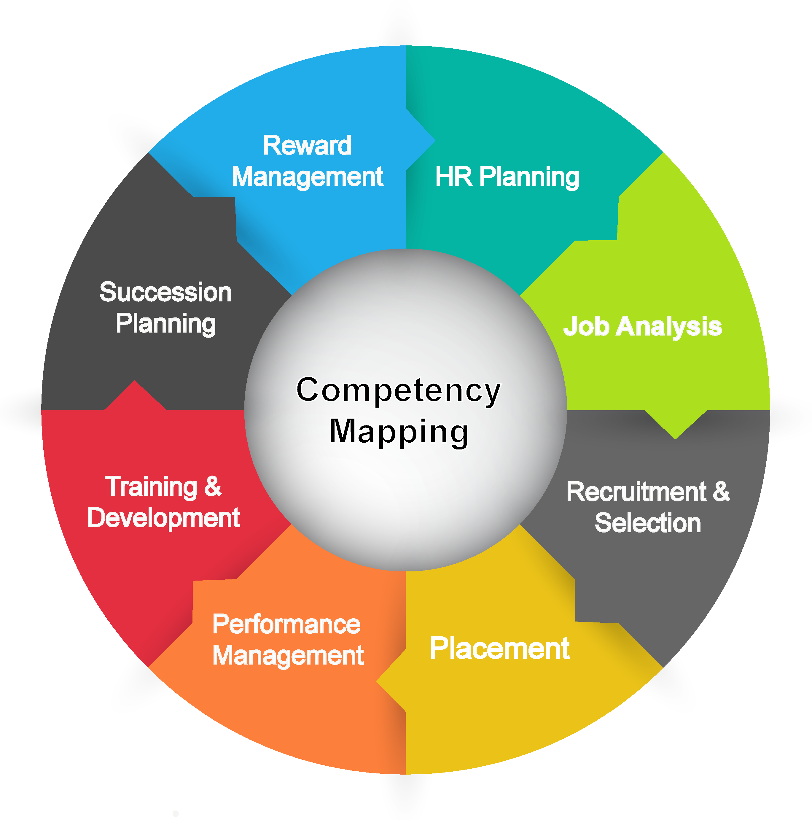 human resource management competency criteria Key selection criteria (ksc) play a very important part in the process of recruiting a person to fill a job vacancy usually there are 5 or 6.