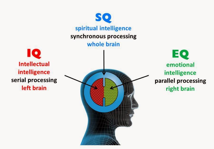 HUMAN QUOTIENS (IQ, EQ, AQ, SQ)