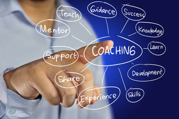 TRAINING TENTANG COACHING DAN COUNSELLING