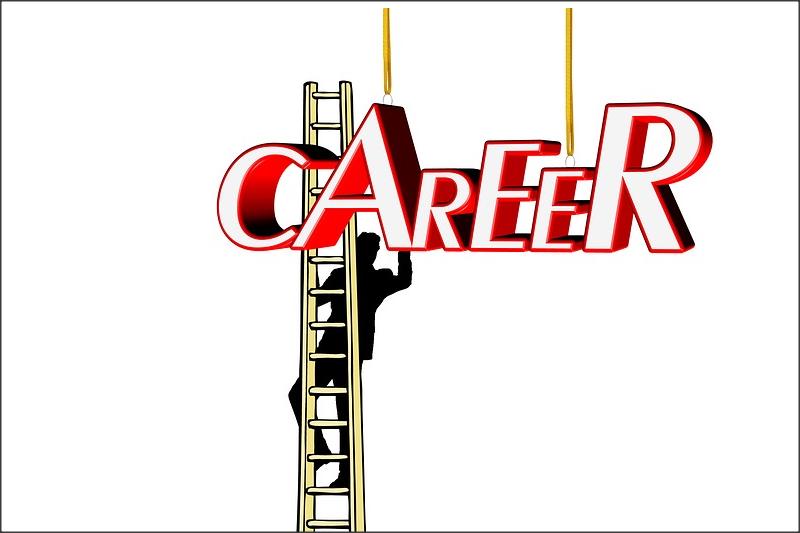 TRAINING TENTANG Sistem Manajemen Karir