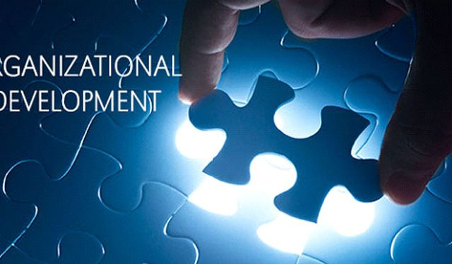 PELATIHAN Organization Development Professional Program